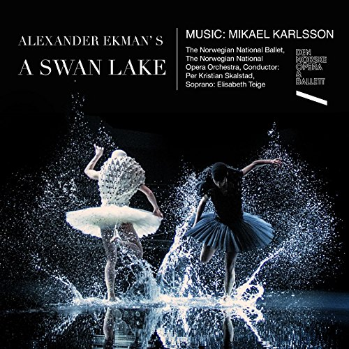 Swan Song 3 (With the Graceful Intensity of a Dancer) [feat. Elisabeth Teige, Norwegian National Opera Orchestra & Per Kristian (Swan Dancer)