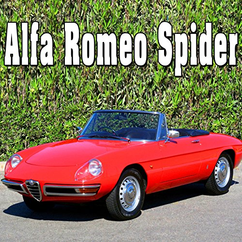 alfa-romeo-spider-internal-perspective-short-long-stationary-revs
