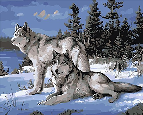 Komking DIY Oil Painting Paint by Numbers for Adults Beginner,Paint by Number Kit Painting on Canvas with Wooden Frame 16x20inch - Two Wolves Pattern