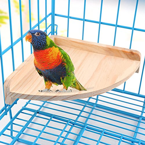 Bird-Perch-Platform-Stand-Wood-for-Small-Animals-Parrot-Parakeet-Conure-Cockatiel-Budgie-Gerbil-Rat-Mouse-Chinchilla-Hamster-Cage-Accessories-Exercise-Toys-Sector