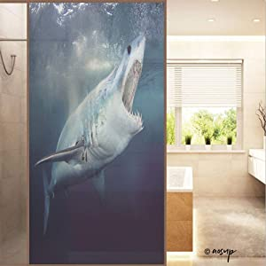 ShopHM Window Film, A Mako Shark with Mouth Open Showing Teeth Anti UV Static Cling Stained Glass Film Sticker - Economic Translucent - 60x120cm (W23.6 xH47.2)