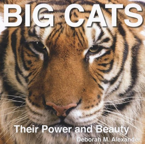 Big Cats: Their Power and Beauty pdf