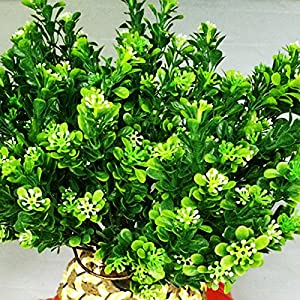 Nyalex 1Pcs(1Pcs=7 branch) Bouquet Fake Green Plant Fake Milan Grass with Leaf Setting Wall Decoration Flower Accessories 108