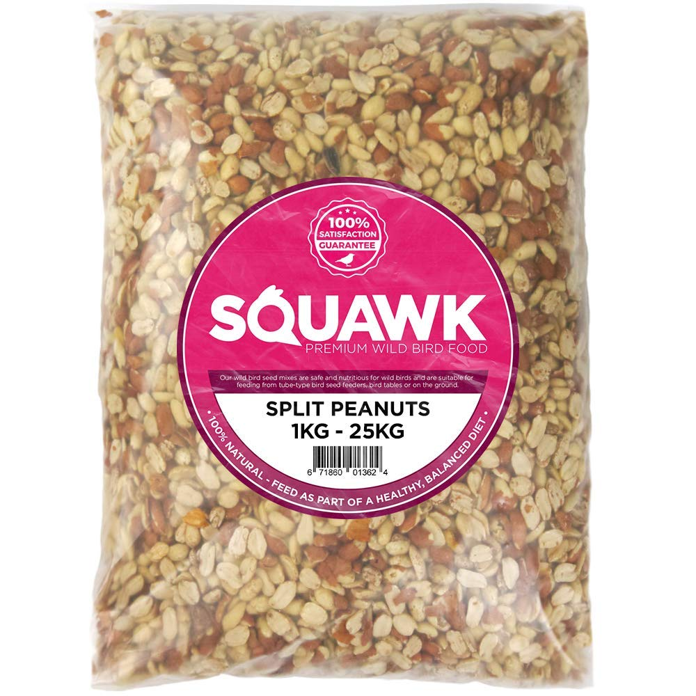 SQUAWK Split Peanuts - Wild Bird Premium Grade Garden Birds Fresh Food Mixture (1KG)