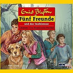 Fünf Freunde und das Teufelsmoor (Fünf Freunde 51)