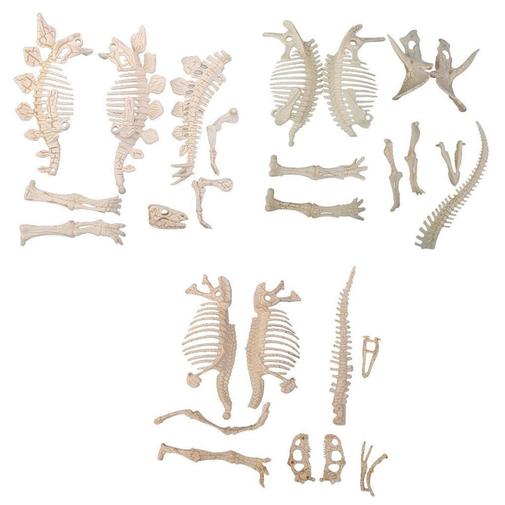 NUOLUX 3Pcs 4D Dinosaur Fossil Skeleton Toys DIY For Kids Fossil Skeleton Figure