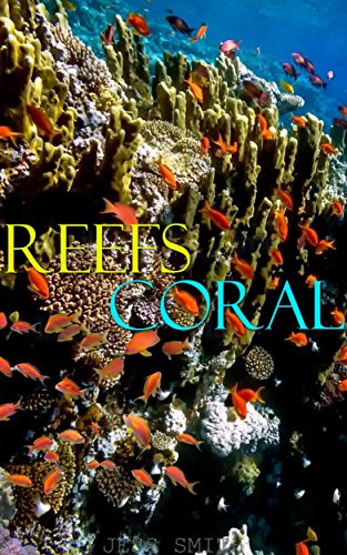 GREAT REEF PICTURES: PROFESSIONAL UNDERWATER OCEAN REEF IMAGES (COLORFUL REEF PICS FOR CHILDREN Book 20) by Jess Smith