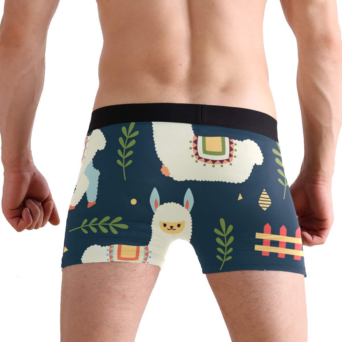 FAJRO Cute Alpaca in Farm Mens Regular Leg Boxer Brief Underwear