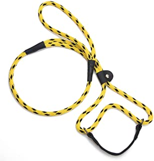 product image for Mendota Pet Dog Walker, Martingale Style Leash - Leash & Collar Combo, Made in The USA - Black Ice Yellow, 3/8 in x 4 ft - for Small/Medium Breeds