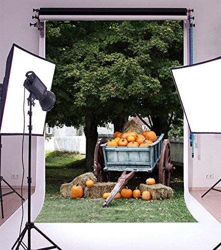 Laeacco 5x7FT Vinyl Backdrop Photography Background Orange Pumpkins Wagon under Shady Oak Tree for Sale Autumn Harvest Nature Background Boys Cowboy Adults Portraits Backdrop Adult Halloween (Shady Tree Studio)