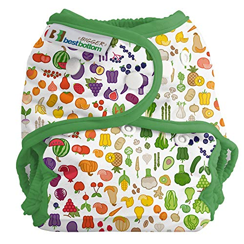 Bigger Best Bottom Reusable Cloth Diaper, Farmers Market