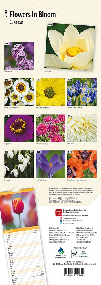 FREE UK SHIPPING FLOWERS IN BLOOM CALENDAR 2018 SLIM WALL NEW BY BROWN TROUT