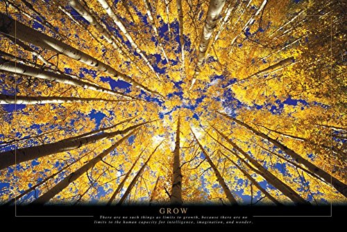 Grow - Trees Poster 36 x 24in