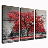 Kolo Wall Art 3 Piece Black and Red Tree Canvas Art Prints Autumn Fall Maple Forest with Leaves Picture Painting Home Decor for Living Room 16″x32″x3 (Red Maple) For Sale