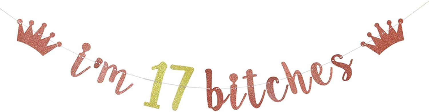 I'm 17 Bitches Banner, 17th Birthday Party Decor, Funny Seventeen Years Old Birthday Banner, Girl's 17th Birthday Party Decorations (Rose Gold)