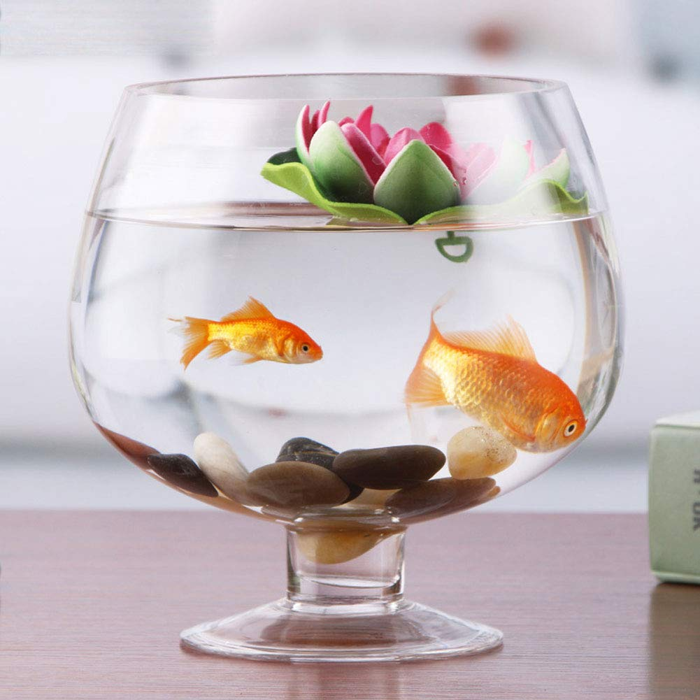 JIANGU - Pecera de Cristal Transparente - Copa de Vino Alta jarrón para el hogar, Sala de Estar, Cultivo de Agua y Cristal de Pescado para Acuario: ...