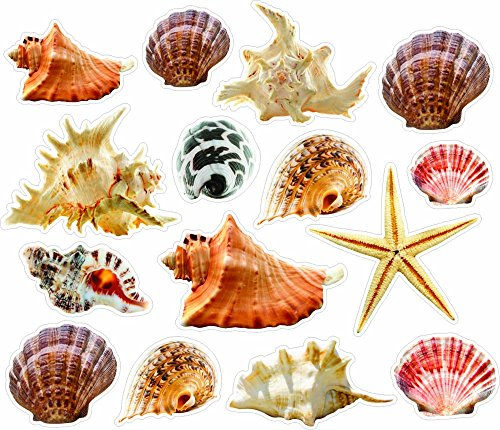 Wall Sticker Seashells and Starfish colorful Removable and Repositionable love ocean inspired motivational cute Wall Vinyl Art Wall decor sticker decal