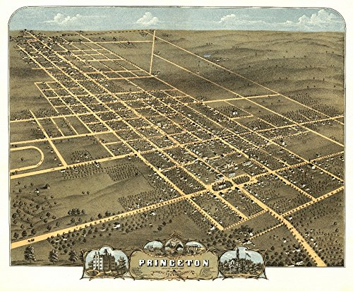 (Princeton, Illinois - Panoramic Map (36x54 Giclee Gallery Print, Wall Decor Travel Poster))
