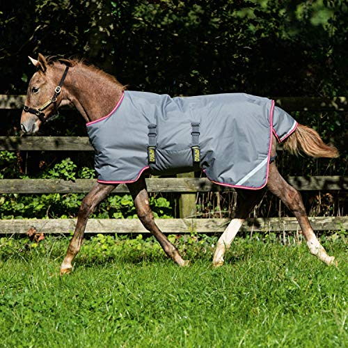 - Amigo Horseware Foal Rug Turnout Excal Purple 60