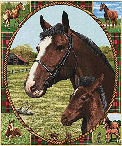 (Pure Country Weavers Thoroughbred Mare and Foal | Woven Tapestry Wall Art Hanging | Horse and Foal on Plaid with Equestrian Imagery | 100% Cotton USA Size 34x26)
