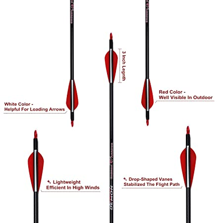 Amazon.com: MS JUMPPER Archery Carbon Arrows - Lote de 6 ...