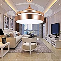 Leesville Invisible Retractable Ceiling Fan Remote Control Home Decoration Living Room Dinner Room 42 Inch Ceiling Fan Light with 4 Blades Can Retractable, Gold Finish