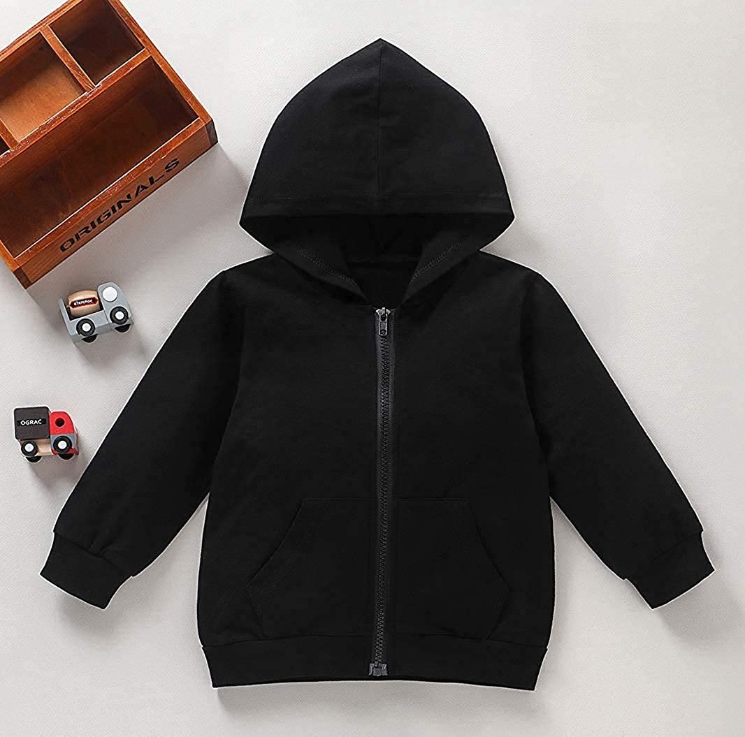 Toddler Boys Girls Hoodies Sweatshirt Casual Long Sleeve Pullover Sweater Hooded Jacket Tops Fall Winter Outfit Clothes: Clothing