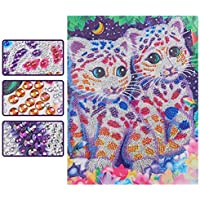 Special Shaped Diamond Painting Kits for Adults, 5D DIY Partial Drill Crystal Rhinestone Embroidery Cross Stitch Home…