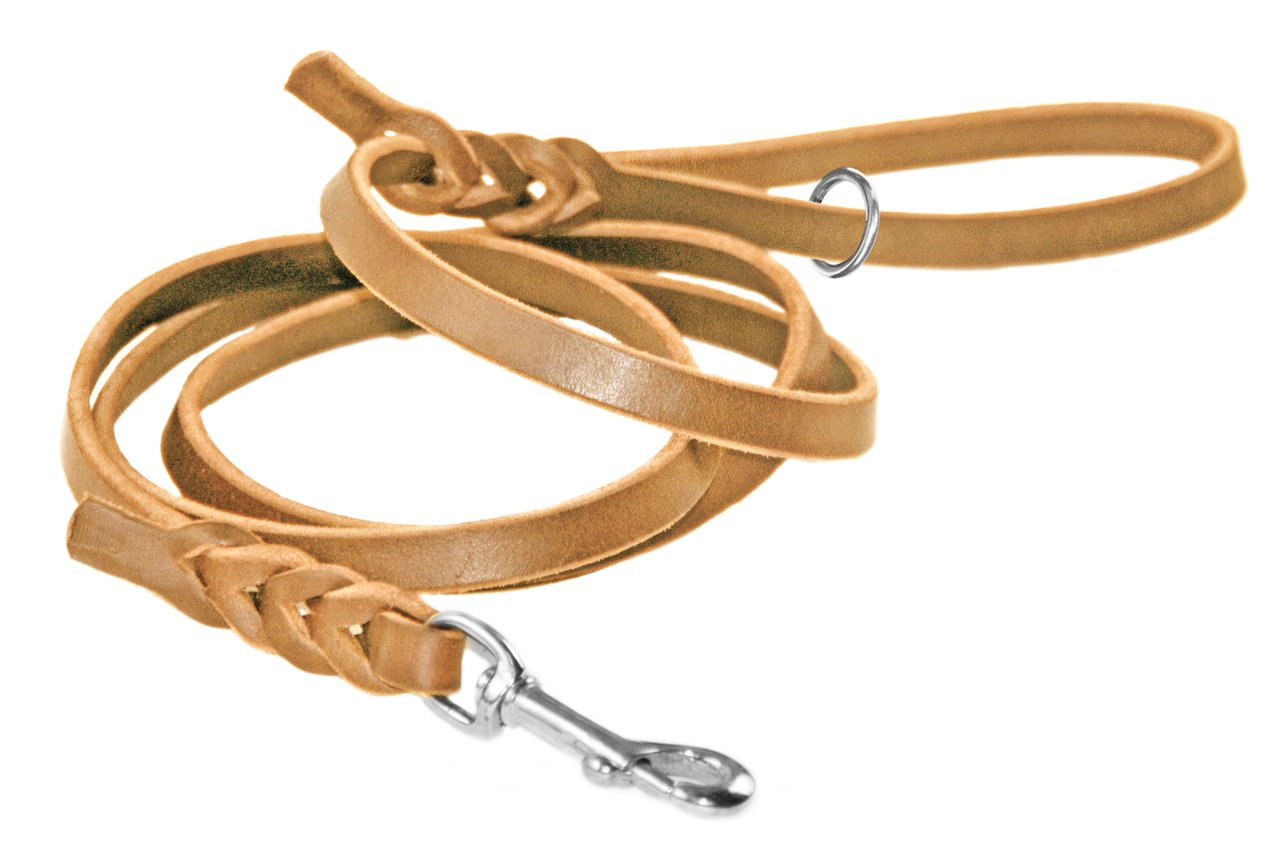Dean & Tyler Tan Nocturne Stainless Snap Leash with Ring on Handle, 2-Feet by 1 2-Inch
