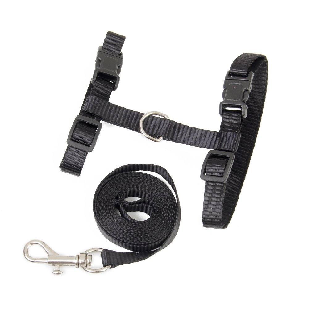 Adjustable Pet Cat Kitten Belt Collar Leash Harness Safety Strap Traction Rope (Black) Lowpricenice
