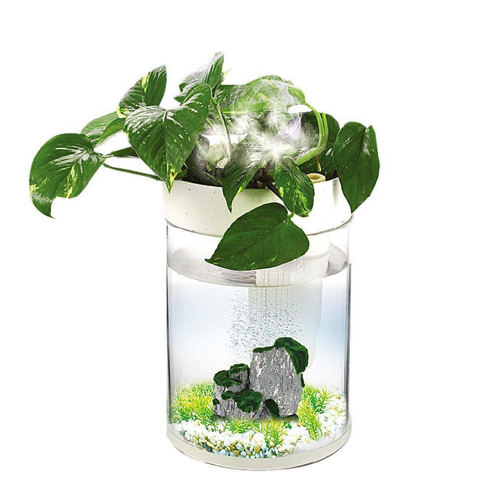 Aqua Innovations Aquarium Kit (include Filter + LED Light) (3L - Round)