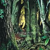 Manafon (Limited Edition Double LP)