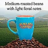 Kauai Coffee Single-serve Pods, Garden Isle Medium Roast – 100% Premium Arabica Coffee from Hawaii's Largest Coffee Grower, Keurig-Compatible Cups - 20 Count