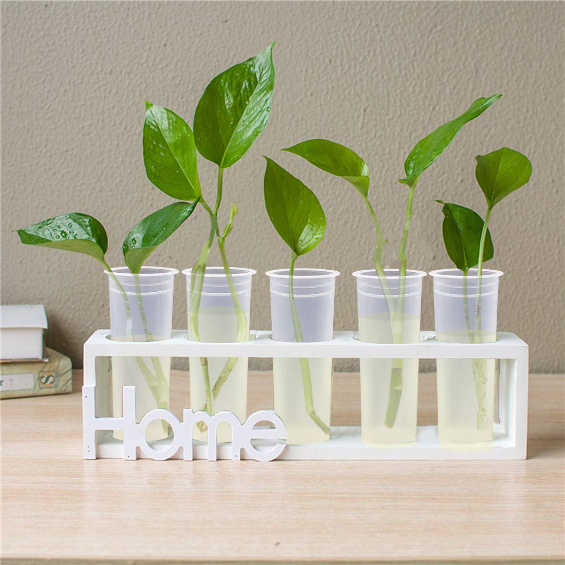 21 Pack Floral Water Tubes with Rack Holder Flower Vials Water Container for Flower Arrangements Milkweed Cuttings