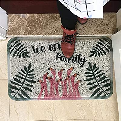 Shisky Flamenco Verde Mat Alfombra de Seda Caja de siembra: Amazon ...