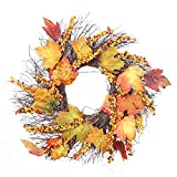QHB Thanksgiving Day Wreath Pine Fruit Maple Leaf Fall Door Wreath Door Wall Ornament ,Fall Harvest Wreath for Front Door or Indoor Wall Décor to Celebrate The Thanksgiving(50x50cm)