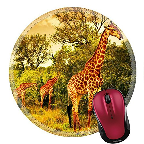 Liili Round Mouse Pad Natural Rubber Mousepad Image of a South African giraffes big family graze in the wild forest wildlife animals safari Kruger National Park bushes of Sabi Sand ()