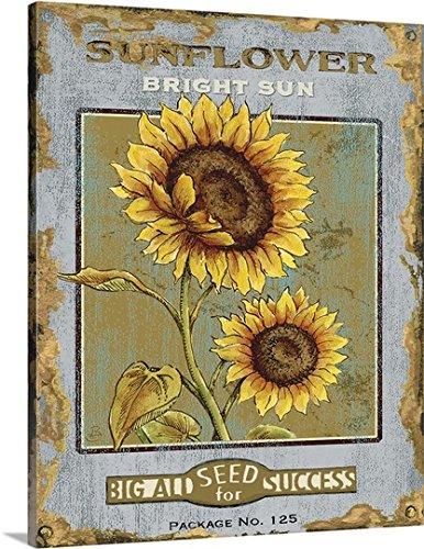 Daphne Brissonnet Premium Thick-Wrap Canvas Wall Art Print entitled Bright Sun Seeds