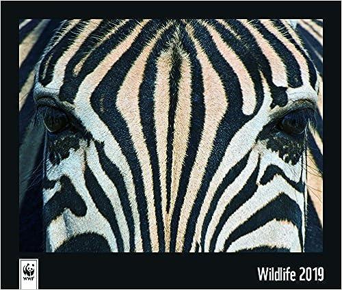 Wwf Wildlife 2019: Wandkalender Wwf por None epub