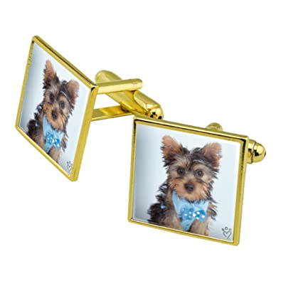 Amazon Com Graphics And More Yorkie Yorkshire Terrier Puppy Dog