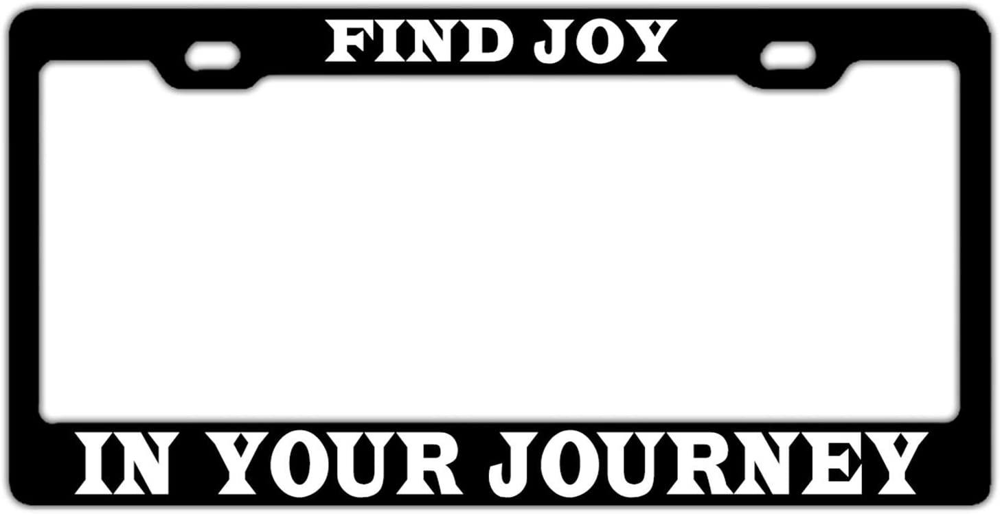 FunnyLpopoiamef License Plate Frame,2 Holes Licenses Plates Frames Stainless Steel Car Licenses Plate Covers Holders US Screws