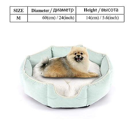 elvnx - Cama para Perros pequeños, medianos, Grandes, sólida ...