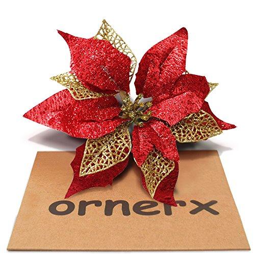 Ornerx 10