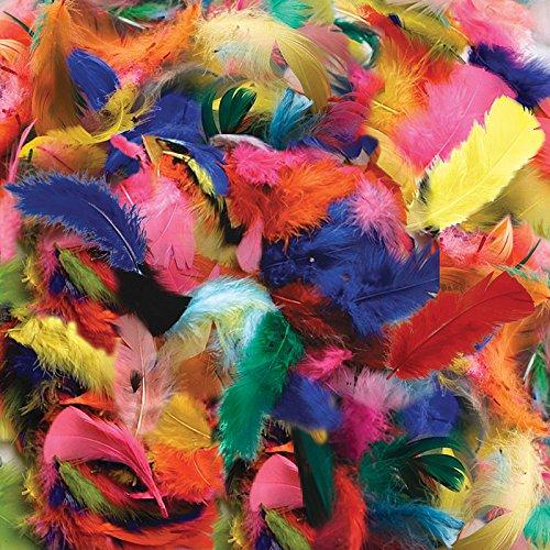 - Creativity Street CK-450002BN Turkey Plumage Feathers, Hot Colors Assorted, 14 Grams Per Pack, 12 Packs