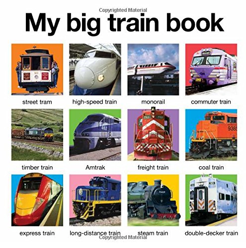 Trains (My Big Train Book (My Big Board Books))