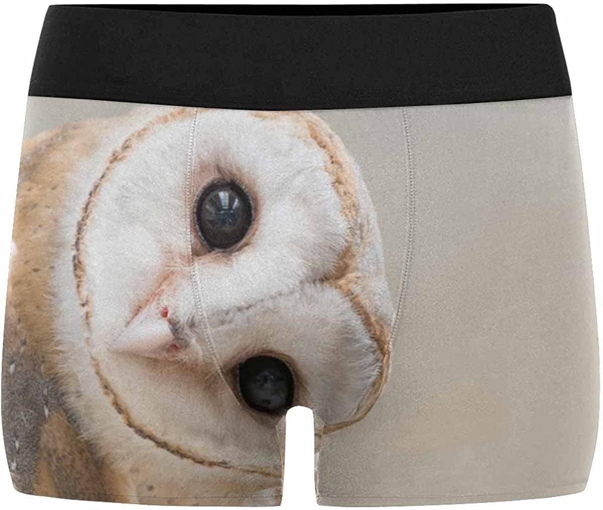 INTERESTPRINT Custom Mens All-Over Print Boxer Briefs Owl XS-3XL