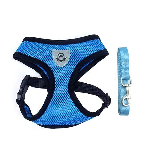 ANRIYA Pet Vest Mesh Strap Strap con Cuerda de tracción, arnés ...