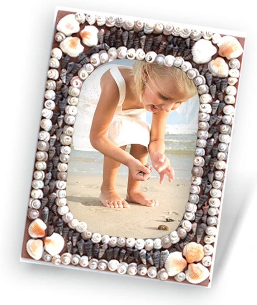 Do It Yourself Shell Craft Activity Kit for Ages 7 Years to Adults Shellbound 1 Toykraft