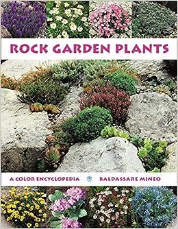 Rock Garden Plants A Color Encyclopedia Baldassare Mineo Fritz