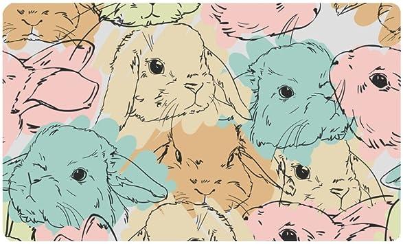 Interestprint Cute Rabbit Bunny Hare Non Slip Indoor And Outdoor Door Mat Rug Home Decor Entrance Rug Floor Mats Rubber Backing 30 L X 18 W Furniture Decor
